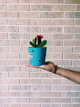 Load image into Gallery viewer, Custom Plant Pots x Free Surprise Sticker