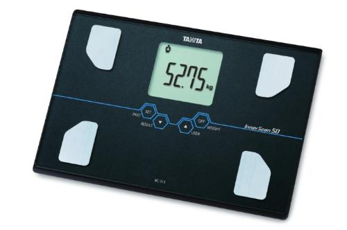 Body Composition Scale BC-313