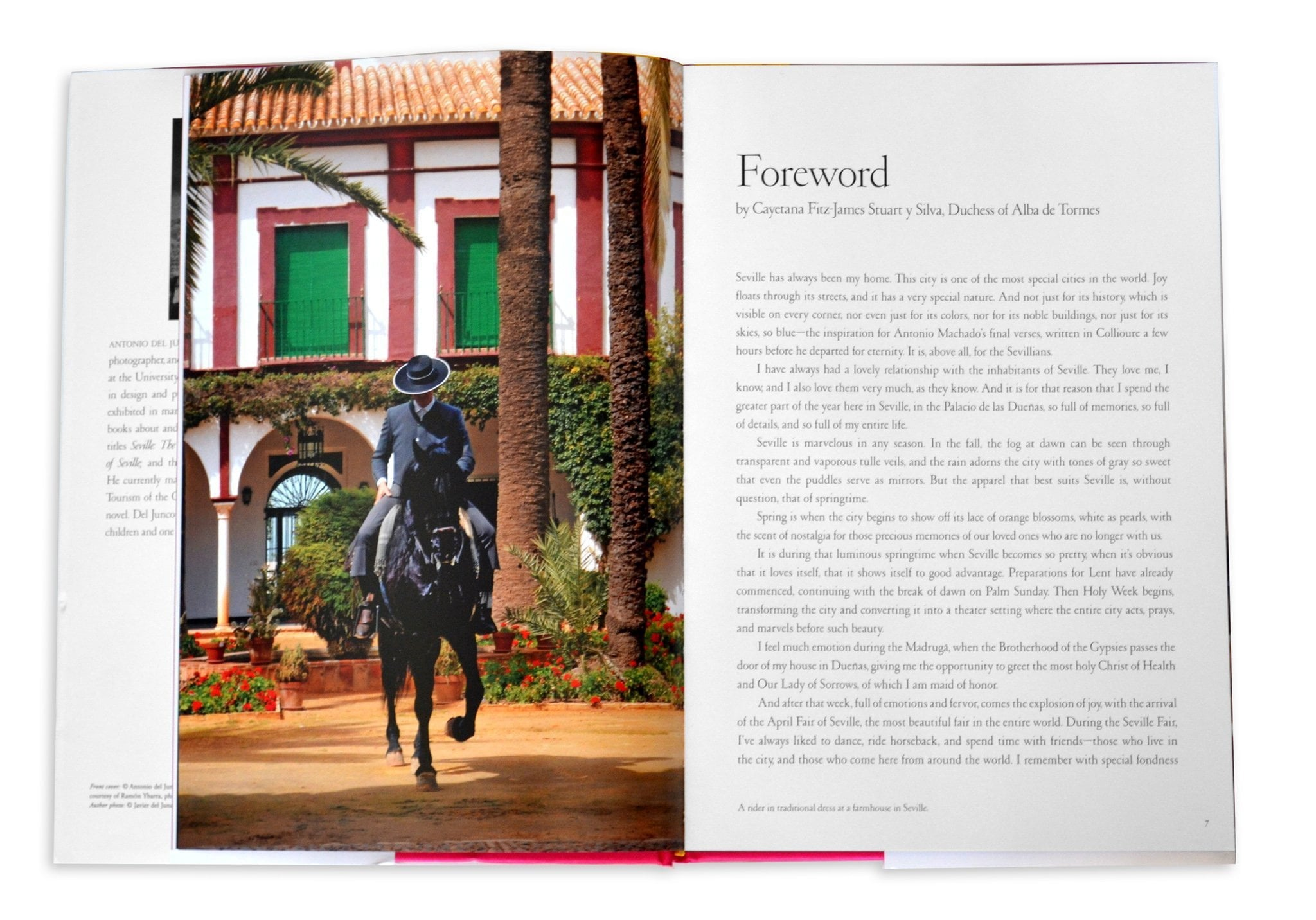 In The Spirit of Seville - Assouline