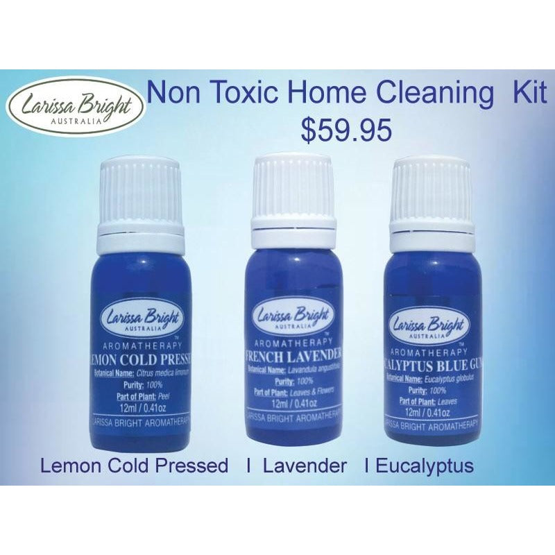 Non Toxic Home Cleaning Kit - Larissa Bright Australia