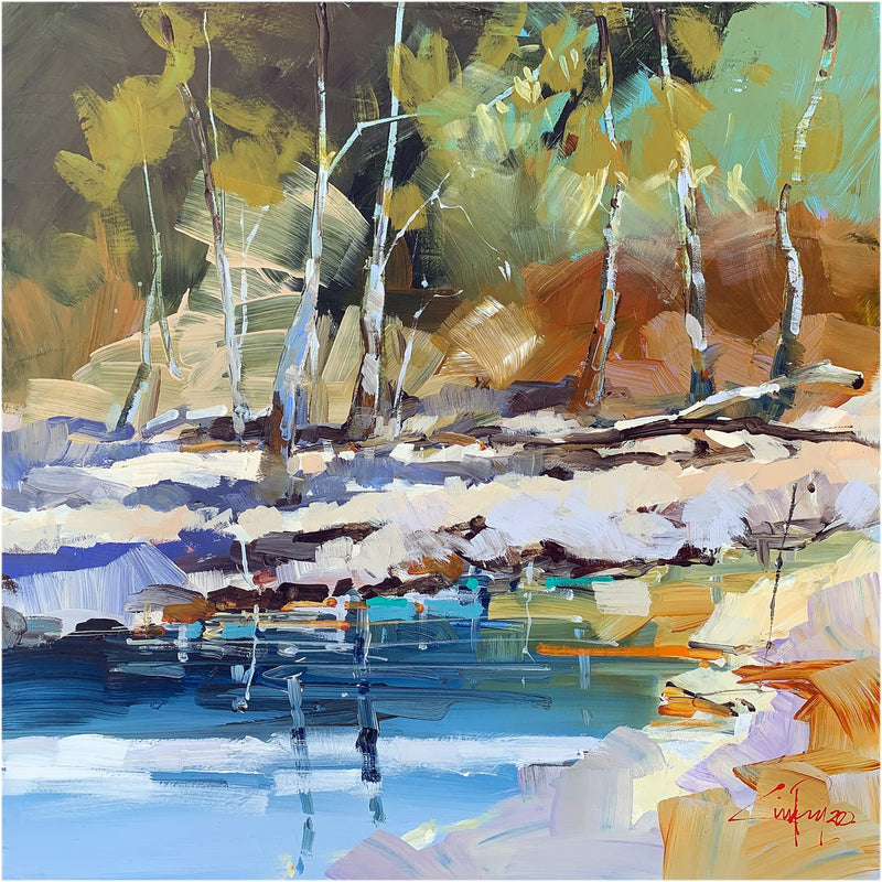 Craig Penny - Wilpena Water - SOLD