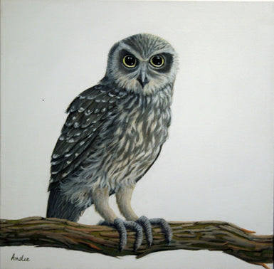James Ainslie - Barking Owl - SELECTED FOR CAMBERWELL ART SHOW