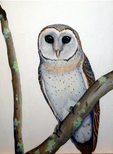 James Ainslie - Owl & Lichen  SELECTED FOR CAMBERWELL ART SHOW