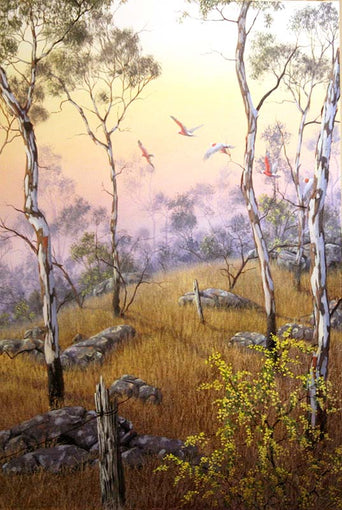 James Ainslie - Wattle Dawn - SELECTED FOR CAMBERWELL ART SHOW