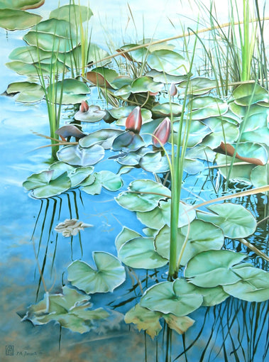 Waterlilies I