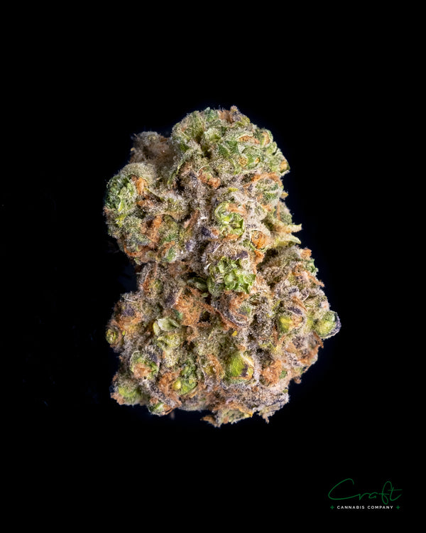 Grape Louie