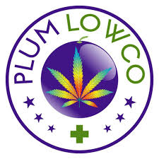 Plum Low Co.