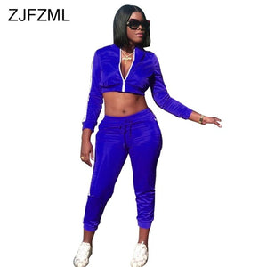 Casual Two Piece Tracksuit Women Front Zipper Long Sleeve Crop Top+Drswstring Bodycon Pant  Autumn Outfit Sportswear 2 Piece Set