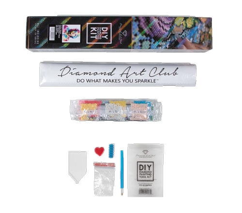 Supplies that come with Diamond Art Club's diamond painting kits