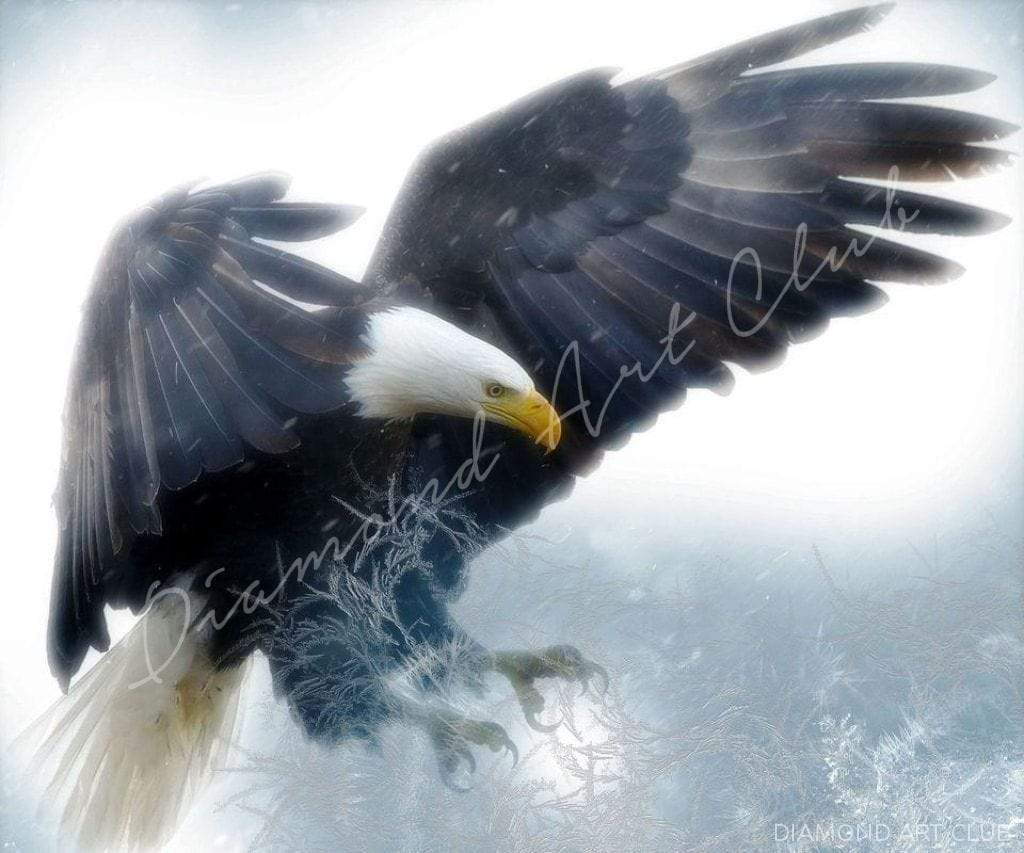 Diamond Painting Arctic Eagle Chill Square / 14.1″ x 16.5″ (36 cm x 42cm) / 23 Colors