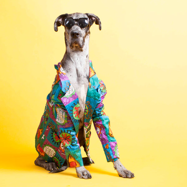 Whatu0027s Dressed In Vintage Armani And Walks On All Fours? The Adorable Doggie  Models Captured By Fashion Photographer Chantal Adair. Drawing From Her  Veteran ...