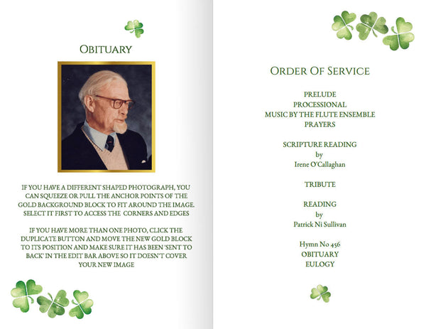 Printable funeral program with an Irish Celtic knot, folding obituary template, add an optional photo
