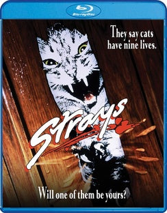 STRAYS (BLU-RAY) - The Crimson Screen Collectibles, horror movie collectibles, horror movie toys, horror movies, blu-rays, dvds, vhs, NECA Toys, Mezco Toyz, Pop!, Shout Factory, Scream Factory, Arrow Video, Severin Films, Horror t-shirts