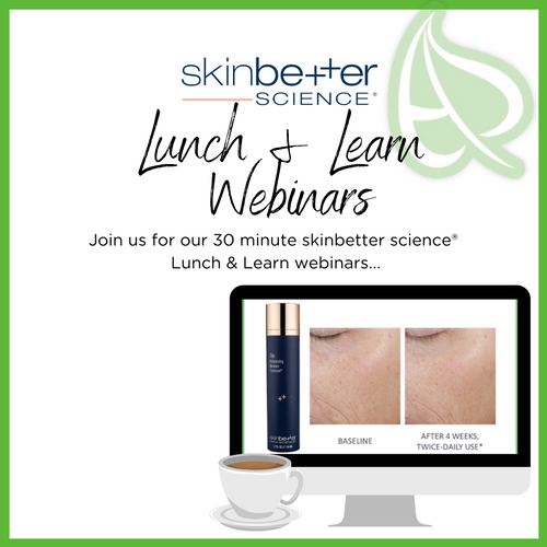 Lunch & Learn webinars