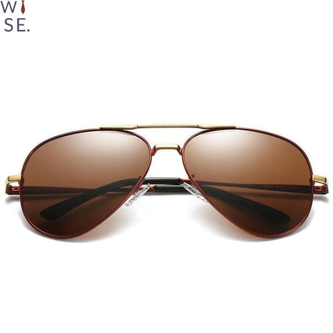The Reno - Brown Frame (Gold) / Brown Lens