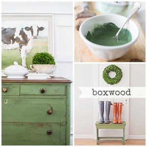 Boxwood - Miss Mustard Seed Milk Paint 230g