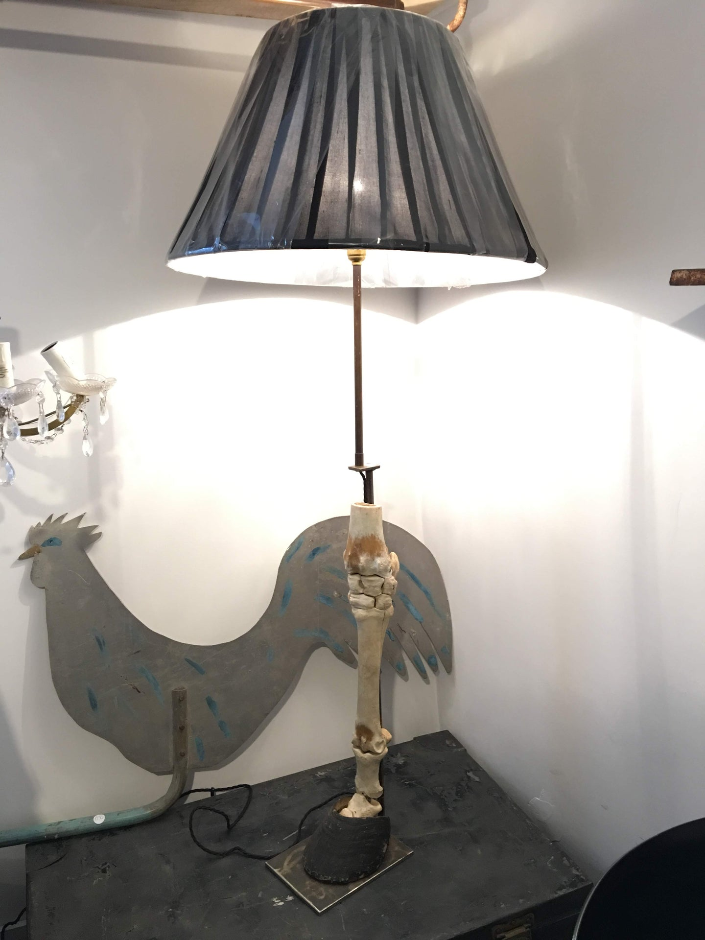 Horses Skeleton Leg with Hoof Upcycled Lamp Taxidermy