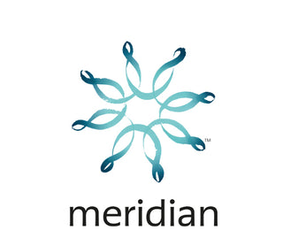 Meridian Energy Copywriting Client | Running In Heels