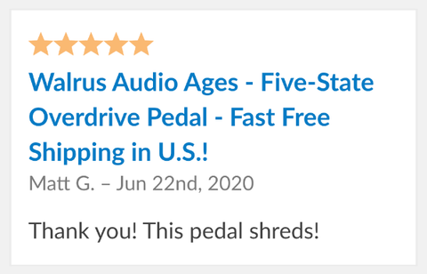 Walrus Audio Ages Review