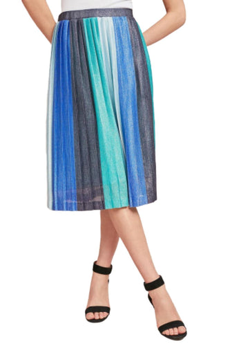 Anthropologie Women's Maeve Sunburst Stripe Sparkly Pleated Stretch Midi Skirt - Luxe Fashion Finds
