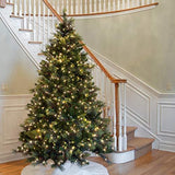 National Tree 7.5 Foot Carolina Pine Tree with Flocked Cones and 750 Clear Lights garrison-city-gadgets.myshopify.com [option1] [option2] [option3]