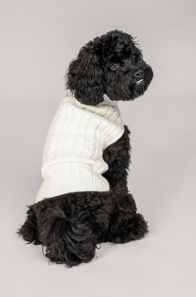 Archie Cable Roll Neck Dog Jumper - White - MESHKI