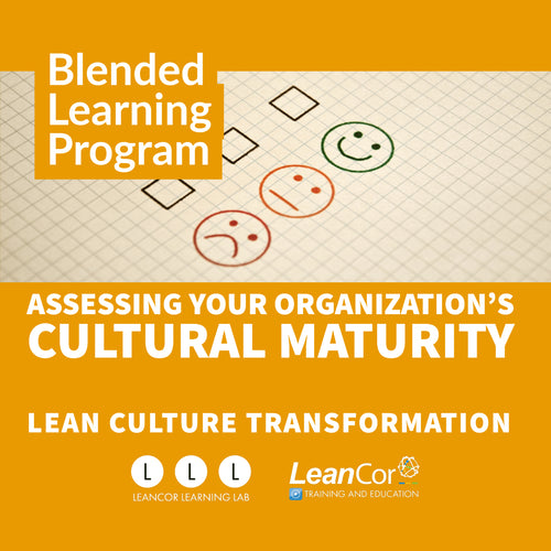 Assessing Your Organization's Cultural Maturity