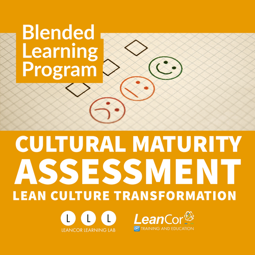 Cultural Maturity Assessment - Custom/Company-Branded (Add-On)