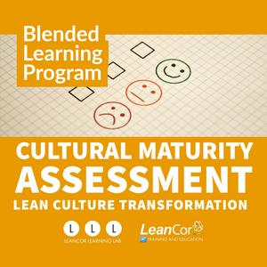 Cultural Maturity Assessment - Custom/Company-Branded