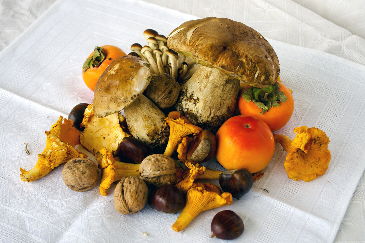 FALL IN LOVE: UMBRICELLI AI FUNGHI PORCINI
