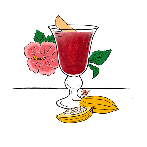 Champagne coupe glass filled with deep red liquid and a floating strip of grapefruit zest. Surrounded by cocoa seed pods and hibiscus flowers.