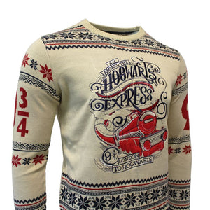Harry Potter Christmas Jumper Hogwarts