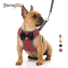 Benepaw Breathable Cute Plaid Small Dog Harness Leash Set