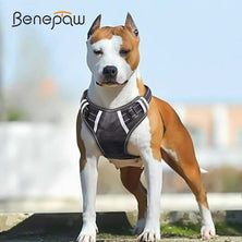 Benepaw Breathable No Pull Large Dog Harness Vest