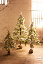 Small Flocked Christmas Tree in Burlap Ball