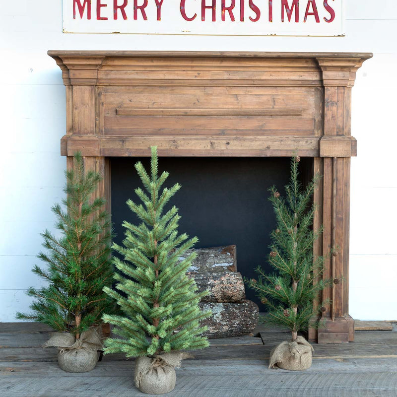Second-Year Faux Seedling ChristmasTrees, Set of 3, Assorted Styles