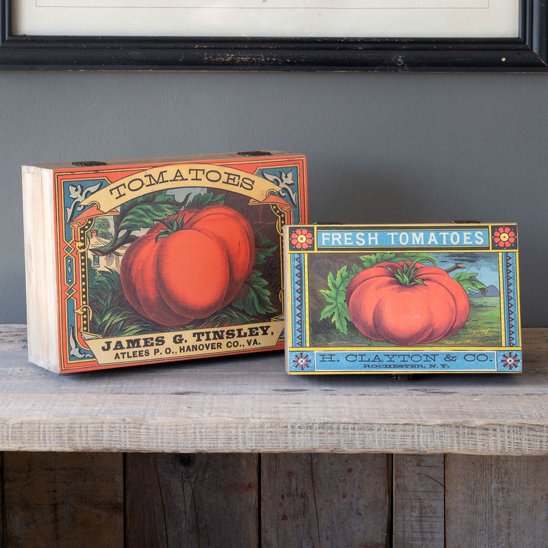 Tomato Seed Pack Storage Boxes