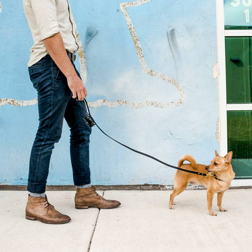 Son of a Sailor - 4 ft. Leather Dog Leash w/ Leather Poop Bag Holder