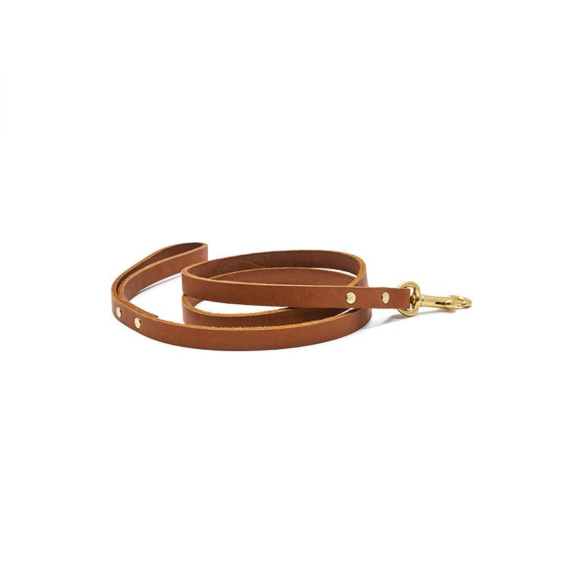 Son of a Sailor -5 ft. Eastwood Dog Leash