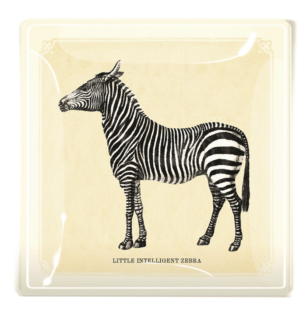 Ben's Garden, Decoupage Glass Tray Little Intelligent Zebra