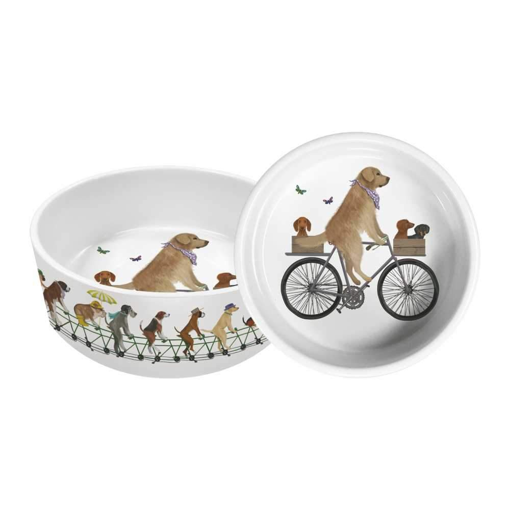 PPD - Pet/Dog Bowl - Fab Funky, Large