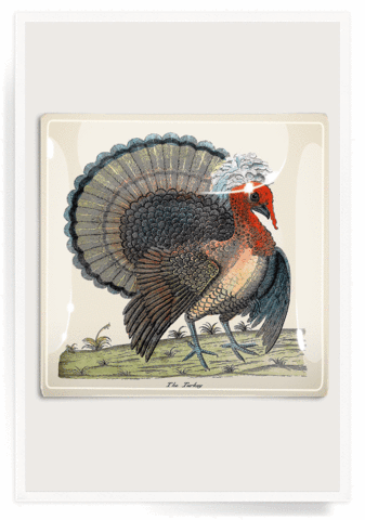 Ben's Garden, Decoupage Glass Tray Turkey