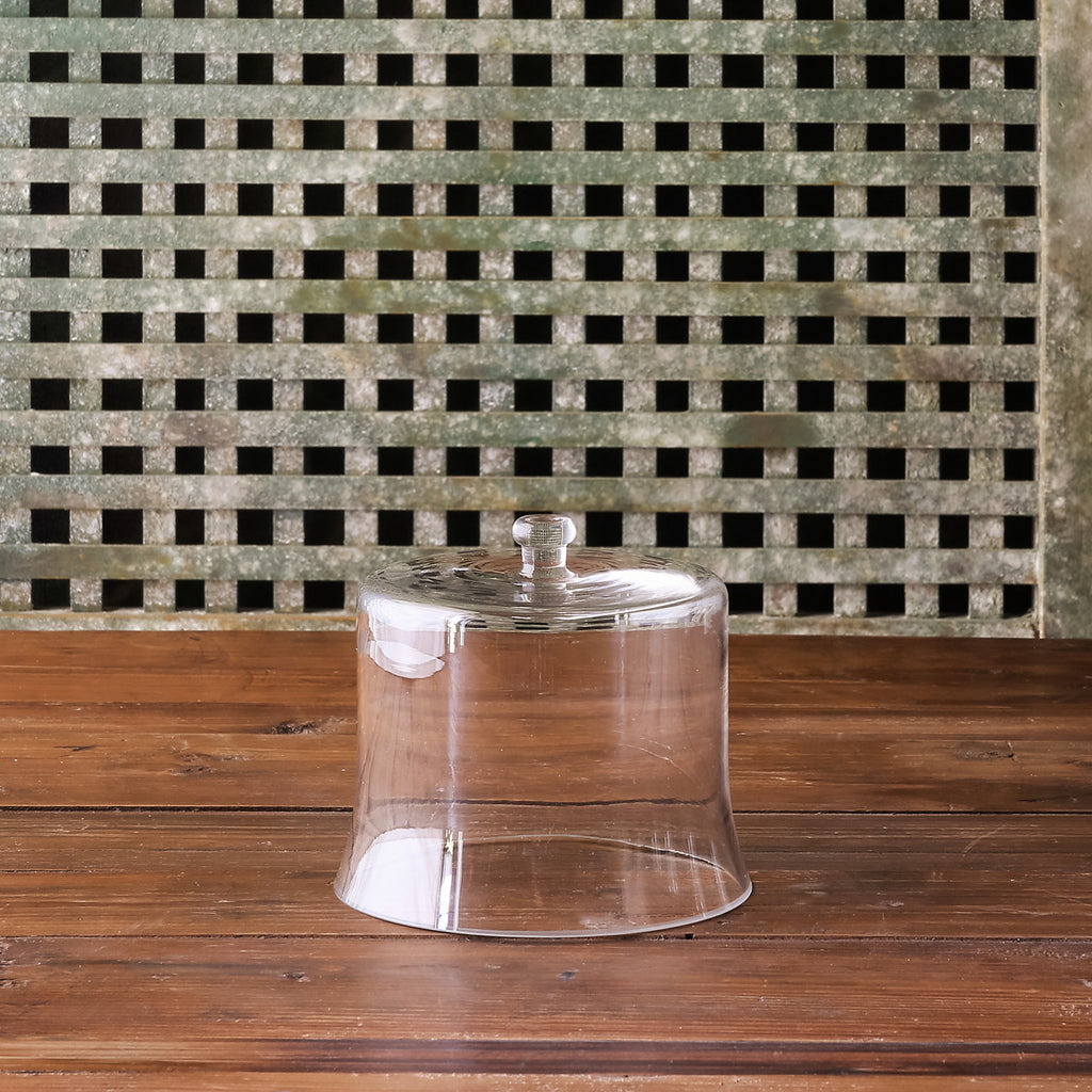 Park Hill - Glass Cloche, Petite