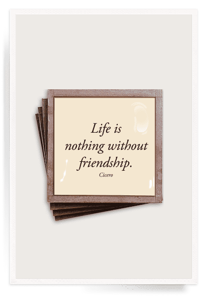 Ben's Garden - Coasters life is nothing without friendship