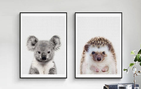 Egel en Koala Canvas Art