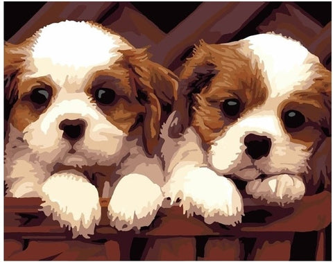 Schattige Puppies - Number Painting