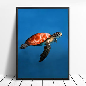 Zeeschildpad | Canvas Art - Science Factory