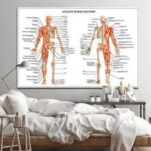 Atlas of Human Anatomy | Canvas Art - Science Factory