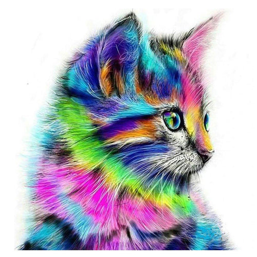 Colorful Cat | Van-Go Schilder-op-Nummer Kit - Science Factory