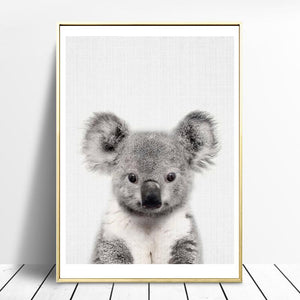 Egel en Koala | Canvas Art - Science Factory